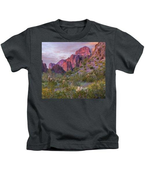 Teddy Bear Cholla And Saguaro, Kofa Kids T-Shirt