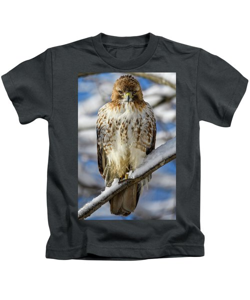 The Look, Red Tailed Hawk 1 Kids T-Shirt