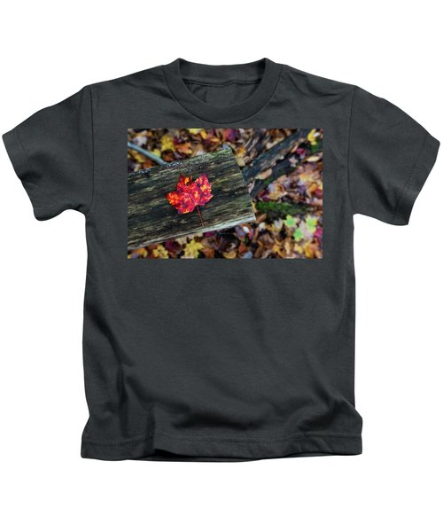 The Reason They Call It Fall Kids T-Shirt