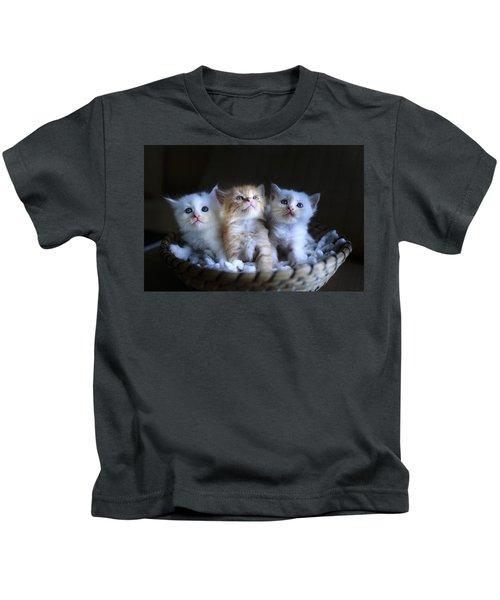 Three Little Kitties Kids T-Shirt