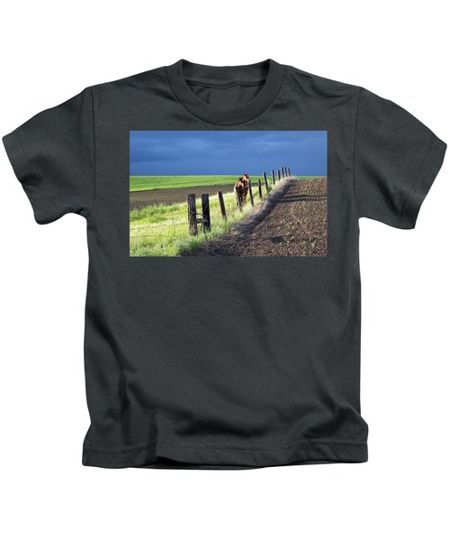 Two Horses In The Palouse Kids T-Shirt