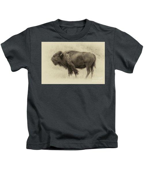 Vintage Bison I Kids T-Shirt