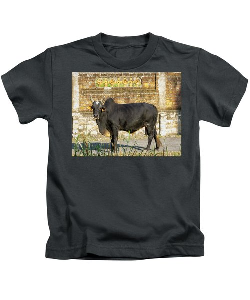 Zebu Bull In India Kids T-Shirt