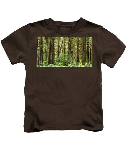 Trees In A Forest, Quinault Rainforest Kids T-Shirt by Panoramic Images