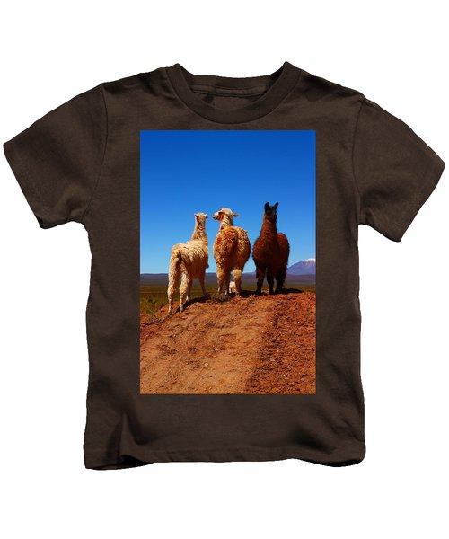 3 Amigos Kids T-Shirt by FireFlux Studios