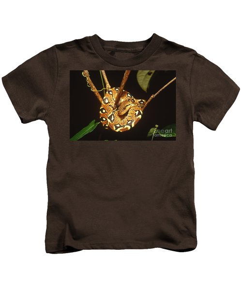 Boa Constrictor Kids T-Shirt by Art Wolfe