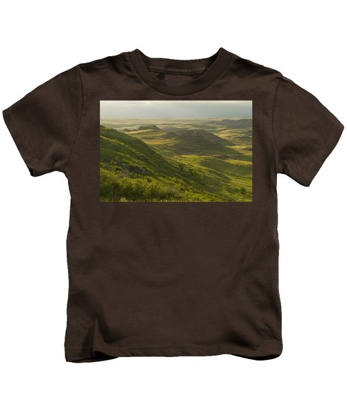 Killdeer Badlands In East Block Of Kids T-Shirt by Dave Reede