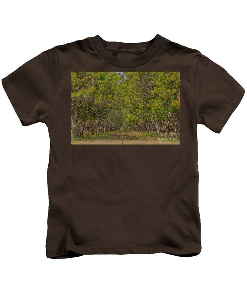 Mango Orchard Kids T-Shirt by Douglas Barnard