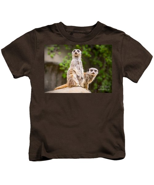 Meerkat Pair Kids T-Shirt by Jamie Pham