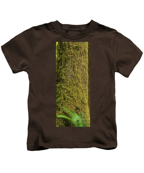 Moss Covered Tree Olympic National Park Kids T-Shirt by Steve Gadomski