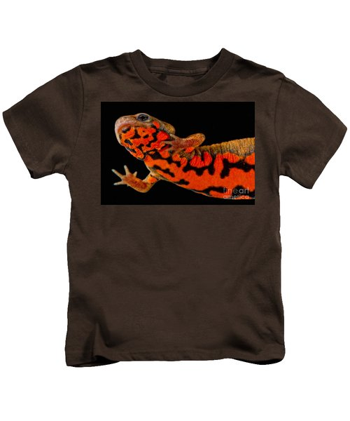 Chuxiong Fire Belly Newt Kids T-Shirt by Dant� Fenolio