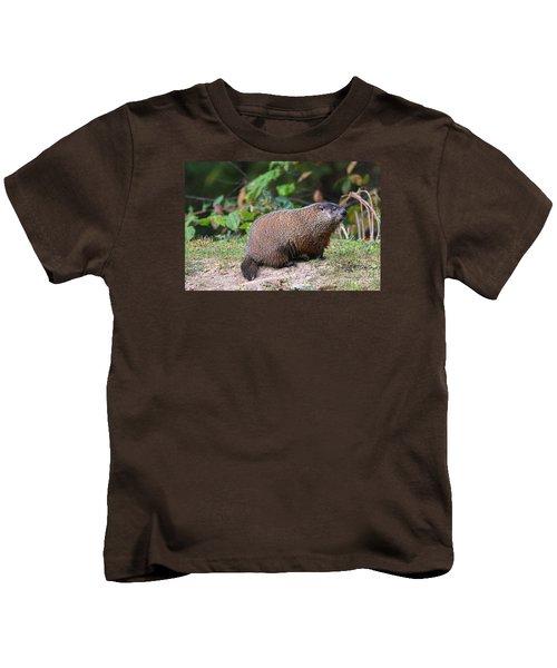 Groundhog  0590 Kids T-Shirt by Jack Schultz