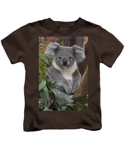 Koala Phascolarctos Cinereus Kids T-Shirt by Zssd