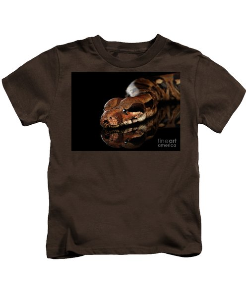 The Boa Constrictors, Isolated On Black Background Kids T-Shirt by Sergey Taran