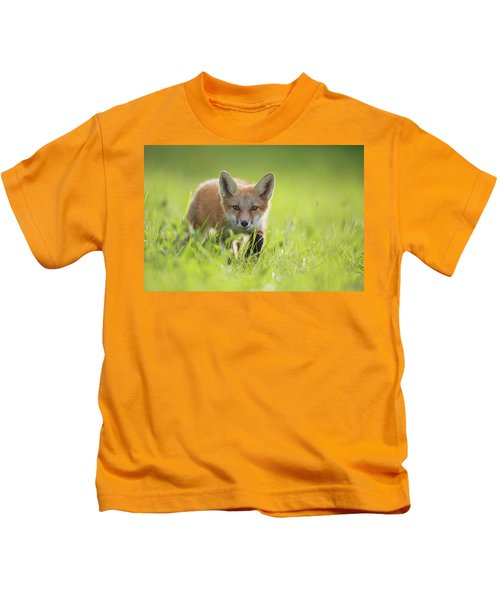 A Fox In The Grass  Montreal, Quebec Kids T-Shirt