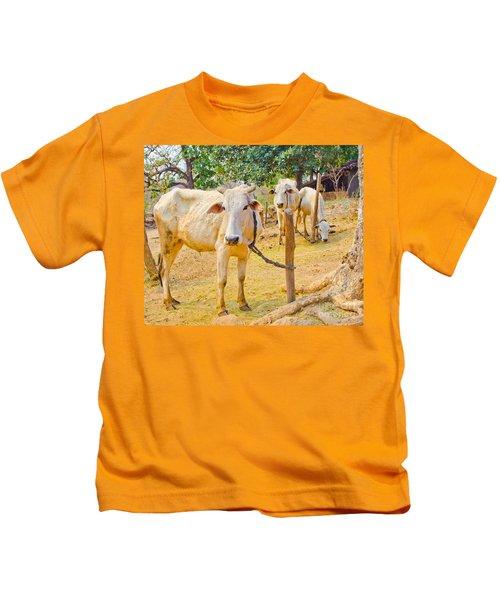 Indian Cows Kids T-Shirt