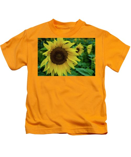 Sunflower Fields Kids T-Shirt