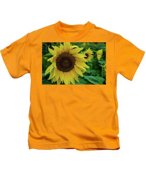 Sunflower Fields Kids T-Shirt