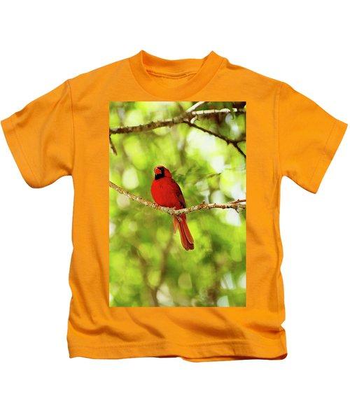 Cardinal Stare Kids T-Shirt