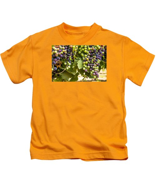 Colorful Red Wine Grape Kids T-Shirt