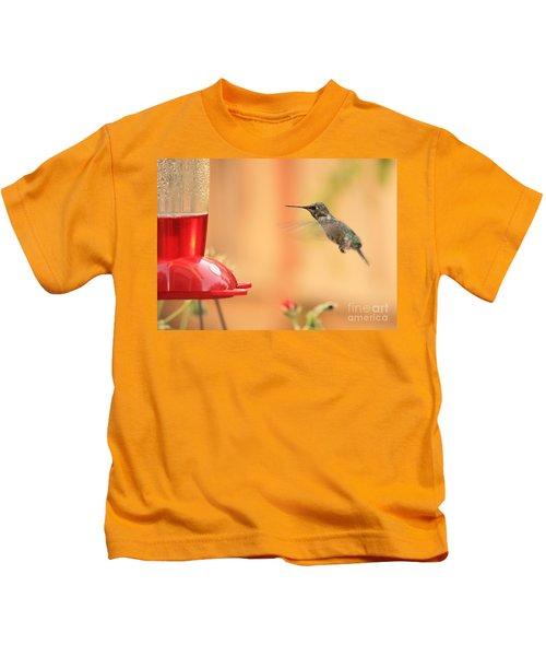 Hummingbird And Feeder Kids T-Shirt