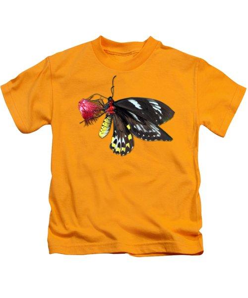 Key West Butterfly 12 Kids T-Shirt