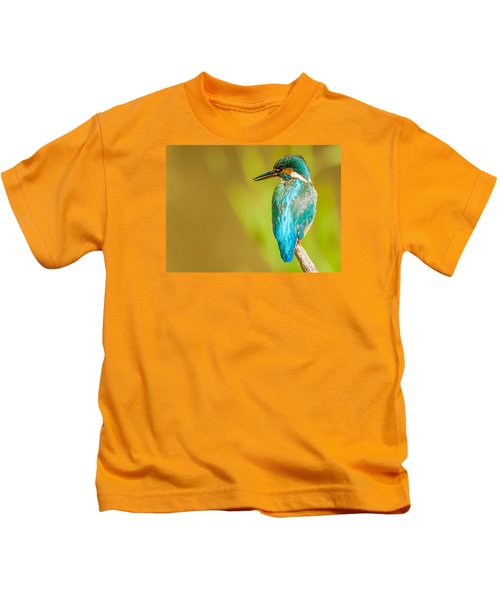 Kingfisher Kids T-Shirt by Paul Neville