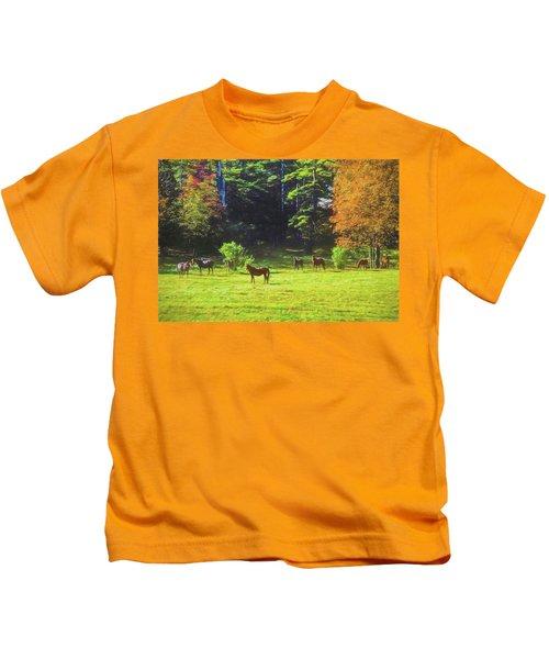 Morgan Horses In Autumn Pasture Kids T-Shirt