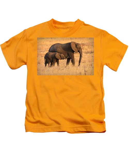 Mother And Baby Elephants Kids T-Shirt