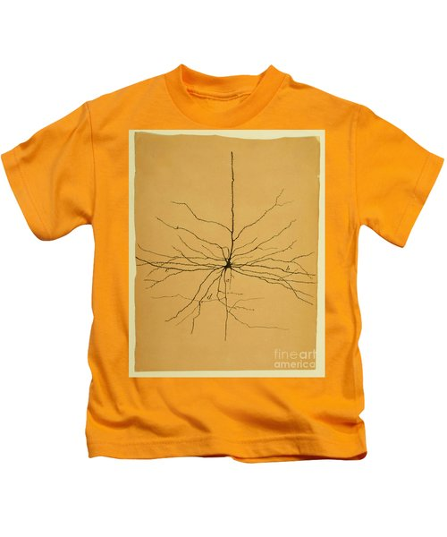 Pyramidal Cell In Cerebral Cortex, Cajal Kids T-Shirt