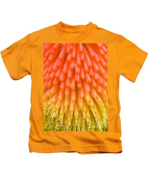 Red Hot Poker Flower Close Up Kids T-Shirt