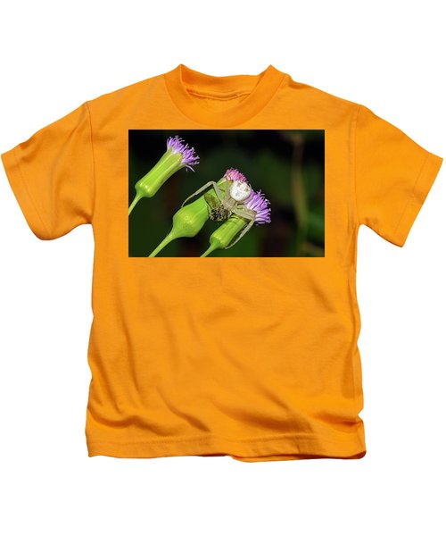 Crab Spider With Bee Kids T-Shirt