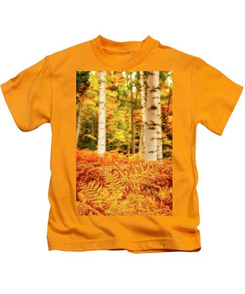 Golden Ferns In The Birch Glade Kids T-Shirt