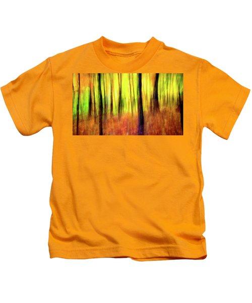 Ozark Autumn Blaze Kids T-Shirt