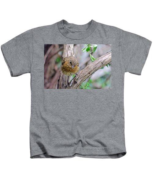Baby Robin Kids T-Shirt