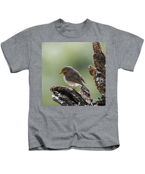 130215p300 Kids T-Shirt