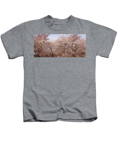 Cherry Blossom Trees In Potomac Park Kids T-Shirt