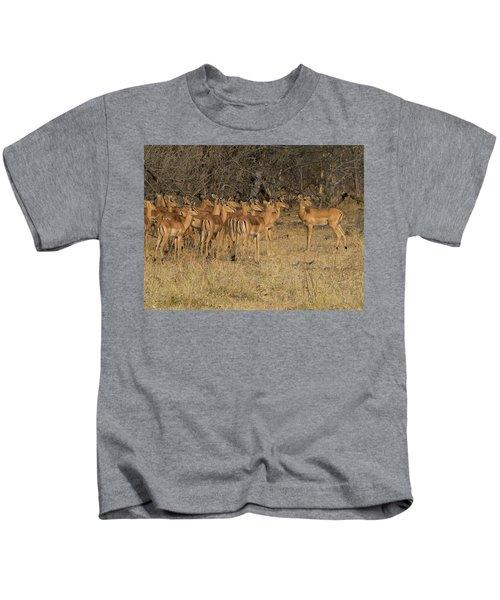 Herd Of Impalas Aepyceros Melampus Kids T-Shirt