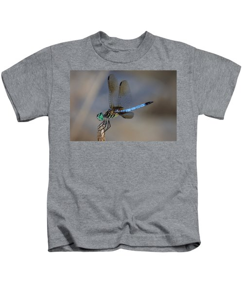 A Dragonfly Iv Kids T-Shirt