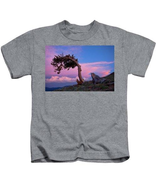 A Westerly Wind Kids T-Shirt