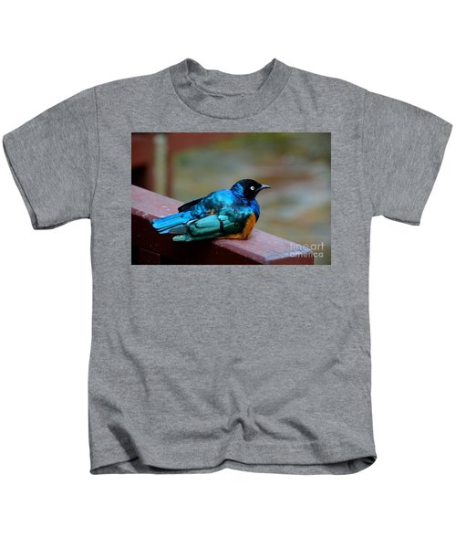 African Superb Starling Bird Rests On Wooden Beam Kids T-Shirt