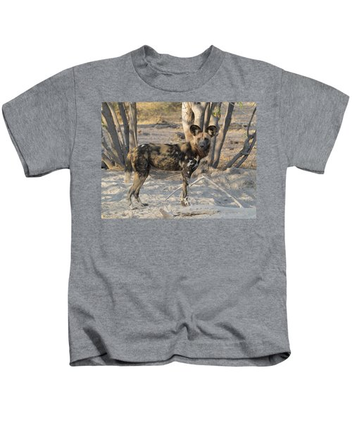 African Wild Dog Lycaon Pictus Standing Kids T-Shirt