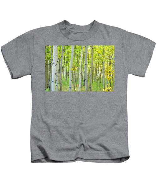 Aspen Tree Forest Autumn Time  Kids T-Shirt