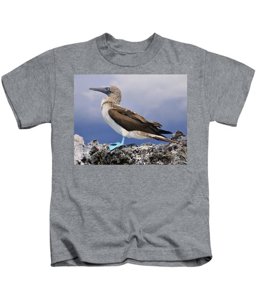 Blue-footed Booby Kids T-Shirt by Tony Beck