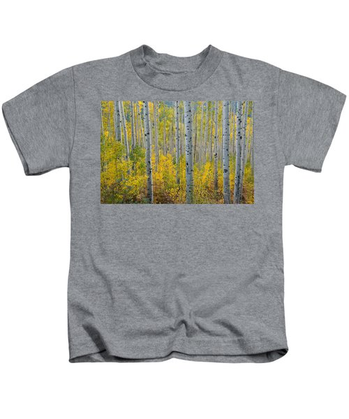 Brilliant Colors Of The Autumn Aspen Forest Kids T-Shirt