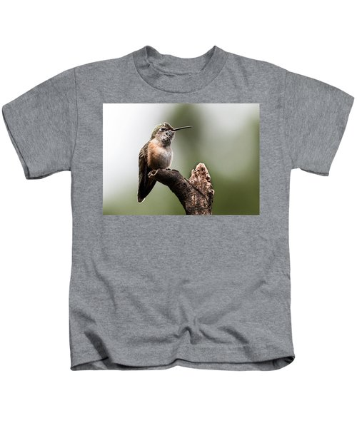 Broad-tailed Hummingbird Sit  Kids T-Shirt