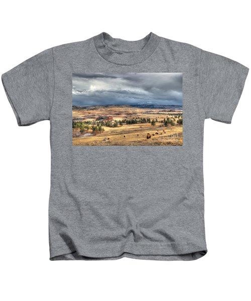 Buffalo Before The Storm Kids T-Shirt