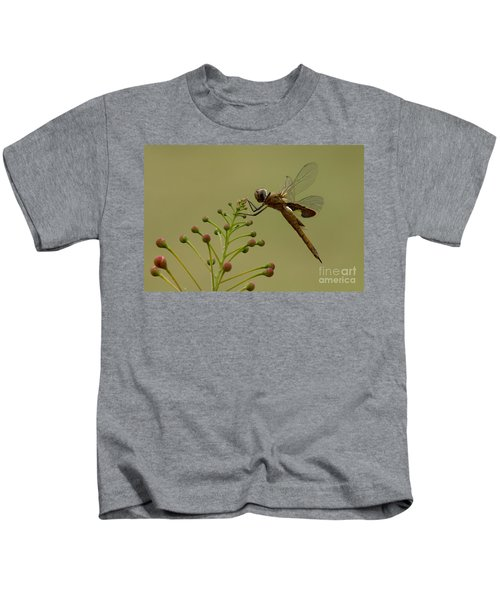Carolina Saddlebags Kids T-Shirt