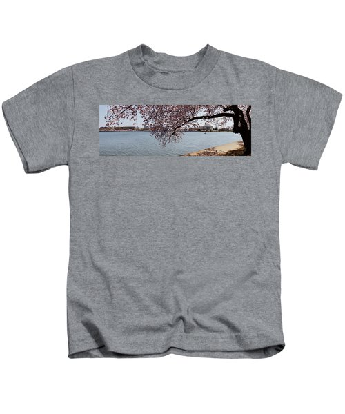 Cherry Blossom Trees With The Jefferson Kids T-Shirt by Panoramic Images