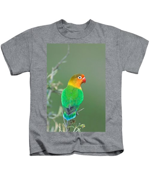Close-up Of A Fischers Lovebird Kids T-Shirt by Panoramic Images